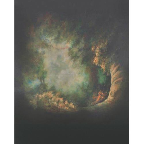 Won Background Muslin Xcanvas Background - Genesis - 10x10'