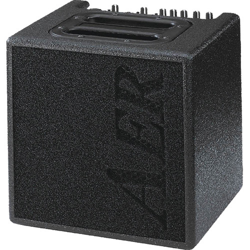 AER Alpha Amplifier System (40W)