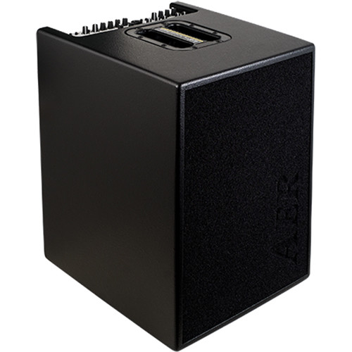 AER Basic Performer 2 Bass Amplifier