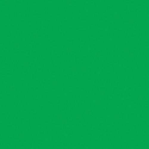 """American DJ Z-PROGEL/SH Pro Gel Sheet (Green, 21 x 24"""")"""