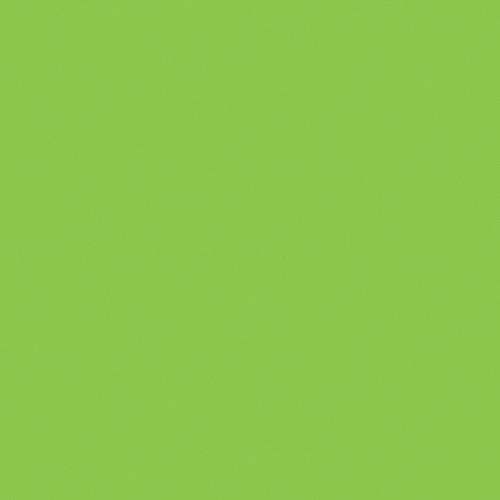 """American DJ Z-PROGEL/SH Pro Gel Sheet (Light Green, 21 x 24"""")"""