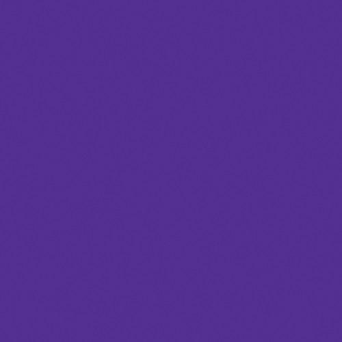 """American DJ Z-PROGEL/SH Pro Gel Sheet (Purple, 21 x 24"""")"""