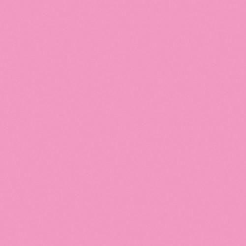 """American DJ Z-PROGEL/SH Pro Gel Sheet (Pink, 21 x 24"""")"""
