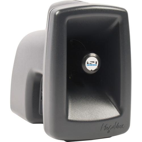 Anchor Audio MEGA-8001 MegaVox Pro Unpowered Companion Speaker