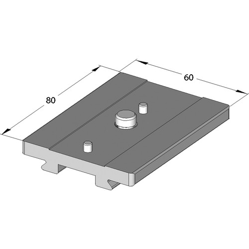 Arca-Swiss Quick Release Camera Plate for Leica T