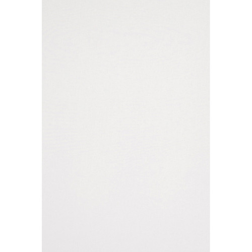 Backdrop Alley Commando Cloth Backdrop (10 x 12', White)