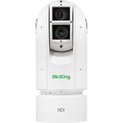 BirdDog Eyes A300 1080p Full NDI PTZ Camera (White)