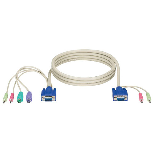 Black Box ServSwitch DT Basic with Audio Computer Cable (2')