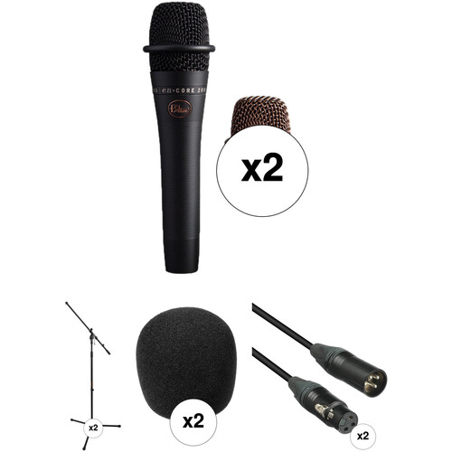 Blue Dual enCORE 200 Active Dynamic Handheld Vocal Microphones with Stands and Accessories Kit (Black)