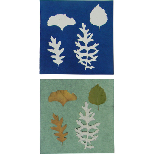 "Cyanotype Store Cyanotype Paper (6 x 6"", White, 12 Sheets)"