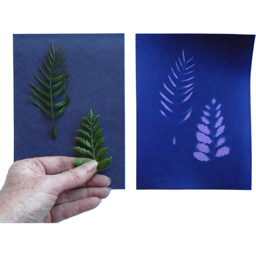"Cyanotype Store Cyanotype Paper (5 x 7"", 24 Sheets, Purple Lilac)"