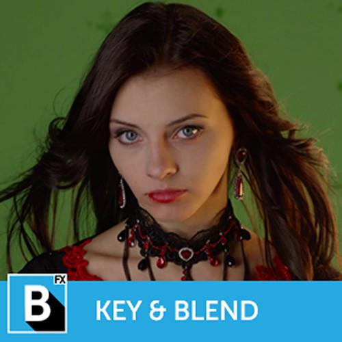 Boris FX Continuum 11 Key and Blend Unit (Download)