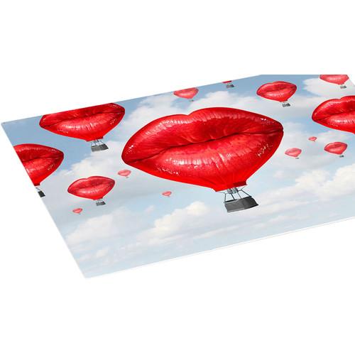 Breathing Color Allure Aqueous Metal Photo Panel (4 x 8', White Matte)