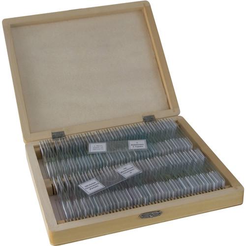 BRESSER 100-Piece Prepared Microscope Slides Set (Biology, Wooden Box)