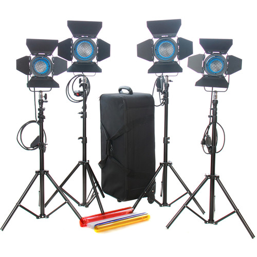 CAME-TV 4-Light Fresnel Tungsten Video Spot Light Kit (2 x 650W and 2 x 300W)