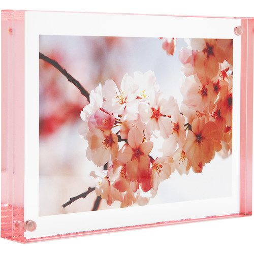 "Canetti Design Group Color Edge Magnet Frame (3.5 x 5"", Rose)"