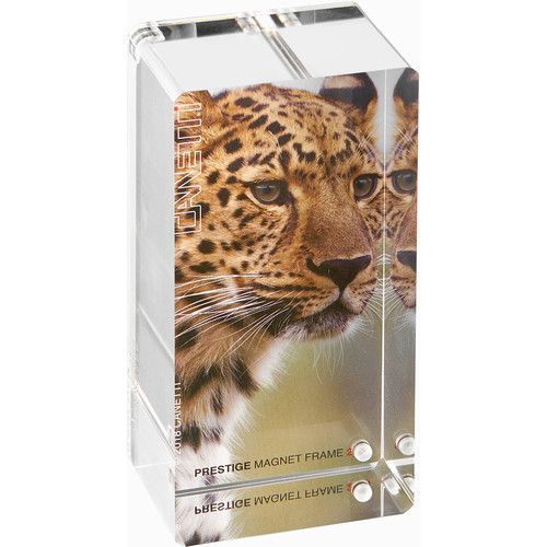 """Canetti Design Group Prestige Magnet Frame (2 x 4"""", Clear)"""