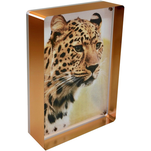"Canetti Design Group Prestige Magnet Frame (5 x 7"", Copper)"