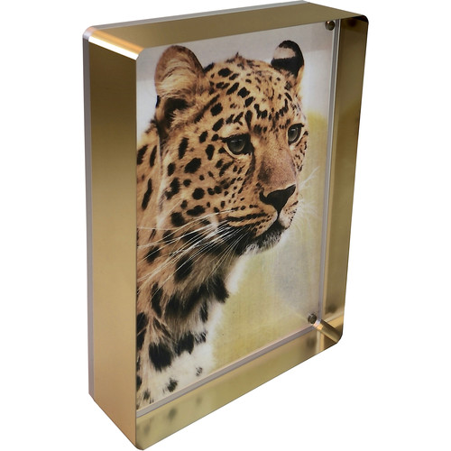 "Canetti Design Group Prestige Magnet Frame (5 x 7"", Gold)"