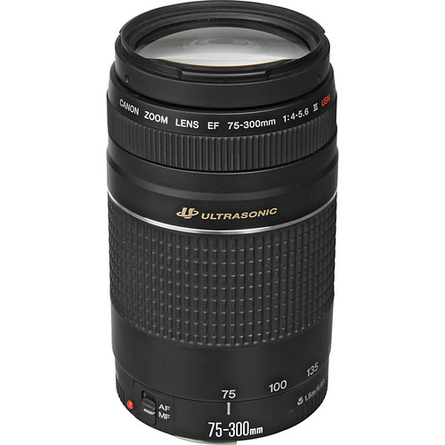 Canon EF 75-300mm f/4-5.6 III USM Lens (Refurbished)