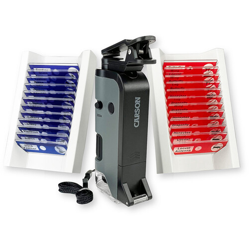 Carson MicroFlip MP-250 100-250x Pocket Microscope