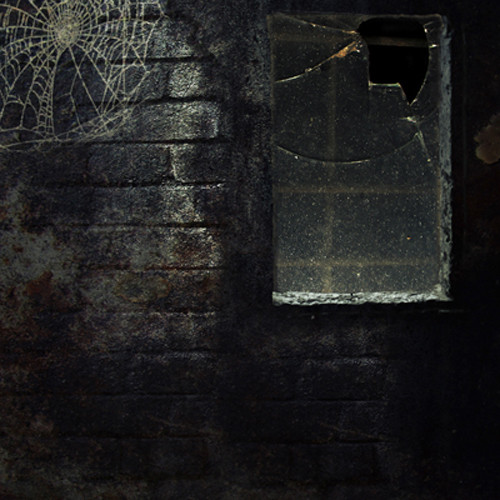 Click Props Backdrops Halloween Window Backdrop (5 x 5')