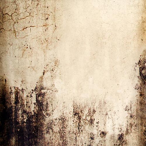 Click Props Backdrops Mouldy Concrete Backdrop (5 x 5')