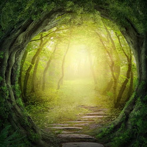 Click Props Backdrops Enchanted Pathway Backdrop (5 x 5')