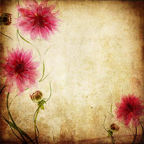 Click Props Backdrops Parchment Flowers Backdrop (5 x 5')