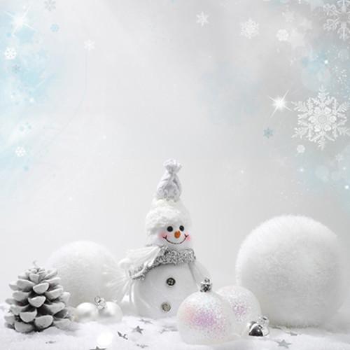 Click Props Backdrops Snowman Backdrop (5 x 5')