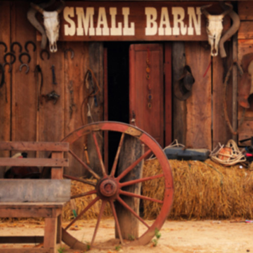 Click Props Backdrops Outside Barn Backdrop (5 x 5')