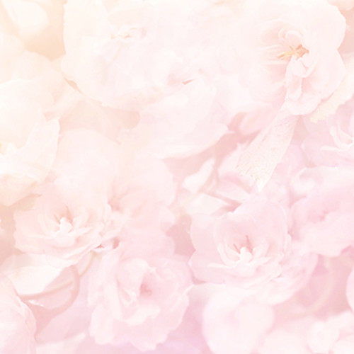 Click Props Backdrops Soft Pink Flowers Backdrop (5 x 5')