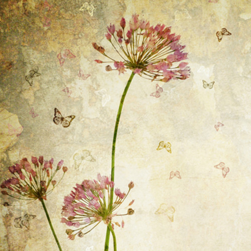 Click Props Backdrops Flower Distressed Backdrop (5 x 5')