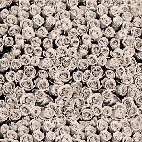 Click Props Backdrops Roses White Backdrop (5 x 5')