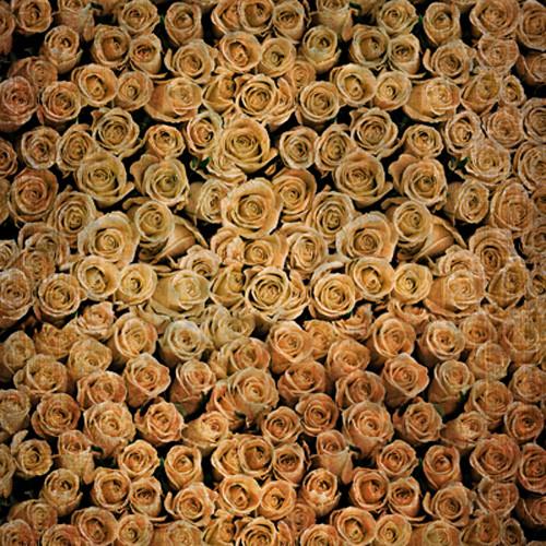 Click Props Backdrops Roses Distressed Orange Backdrop (5 x 5')