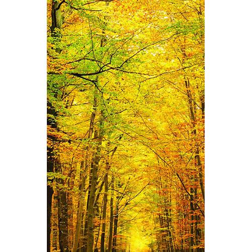 Click Props Backdrops Golden Forest Backdrop (5 x 8')