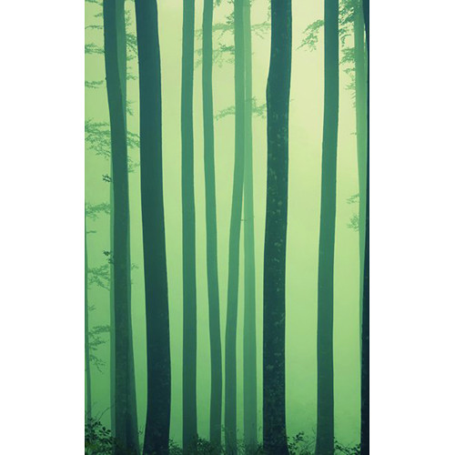 Click Props Backdrops Foggy Forest Backdrop (5 x 8')