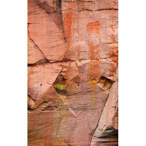 Click Props Backdrops Arizona Rock Backdrop (5 x 8')
