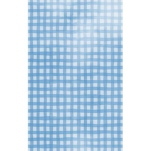 Click Props Backdrops Gingham Blue Backdrop (5 x 8')