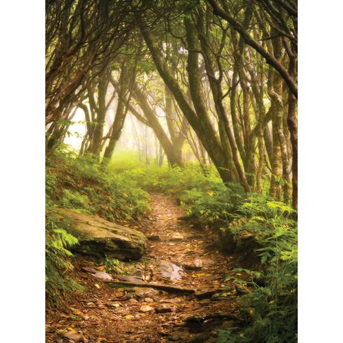 Click Props Backdrops Forest Path Backdrop (9.5 x 7')