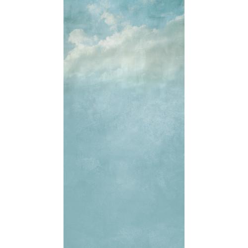 Click Props Backdrops Cloudy Day Backdrop (5 x 9.8')