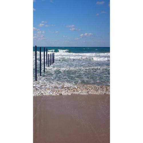 Click Props Backdrops Surfs Up Backdrop (7 x 13')