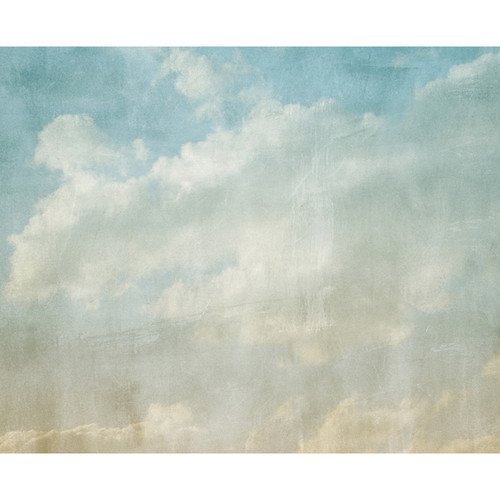 Click Props Backdrops Cloudy Day Backdrop (8 x 9.84')
