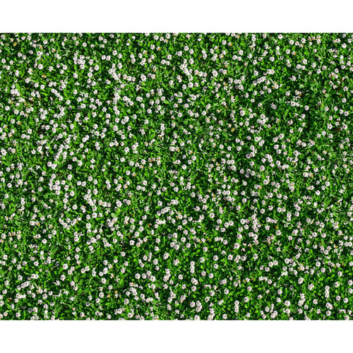 Click Props Backdrops Daisy Grass Backdrop (8 x 9.8')