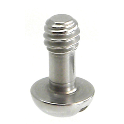 "Desmond Long Shaft 1/4""-20 Cap Screws (10-Pack)"