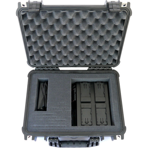 Dolgin Engineering On-The-Go 4-Position Charger Field Kit for Sony PD170 / VX2100 / NP L Camera Battery Packs