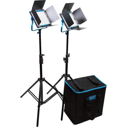 Dracast Silver Series LED500 Daylight 2-Light Kit with Soft Case