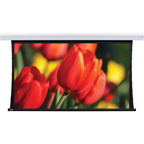 """Draper 107246FNQLP Silhouette/Series V 96 x 96"""" Motorized Screen with Low Voltage Controller, Plug & Play, and Quiet Motor (120V)"""