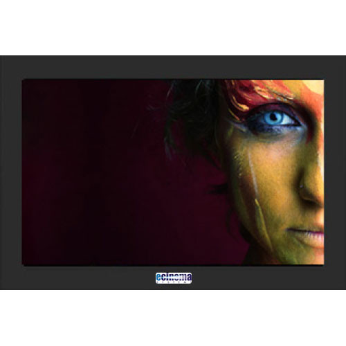 eCinema Systems FX24-1ND Color Grading Monitor