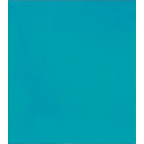 "Eliminator Lighting Plastic Gel Sheet (Aqua, 21 x 24"")"